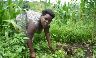 Government Must Support Rural Women To Adopt Organic Farming Practices